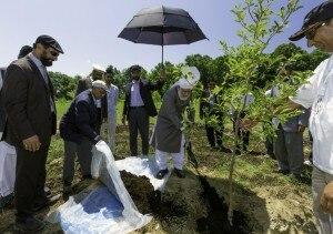 Hadiqa-Ahmad-Tree-Planting