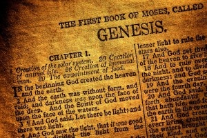 The first two chapters of the Bible narrate the creation story.