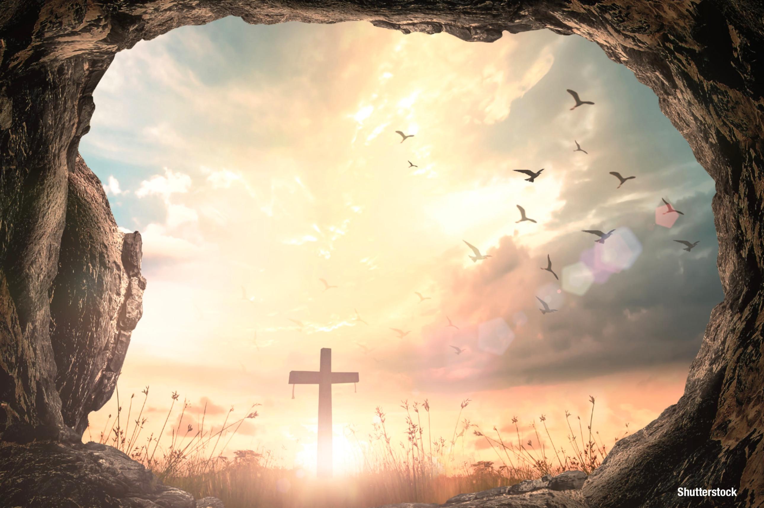 Image result for salvation